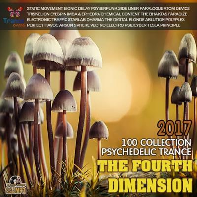 The Fourth Dimension: Psy Trance (2017)