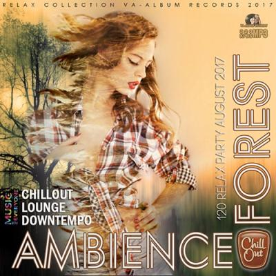 Ambience Forest (2017)